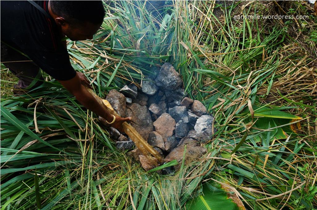 SENTANI_setelah cukup panas, batu yang dibakar dipindahkan ke lubang yang sudah dilapisi dedaunan.
